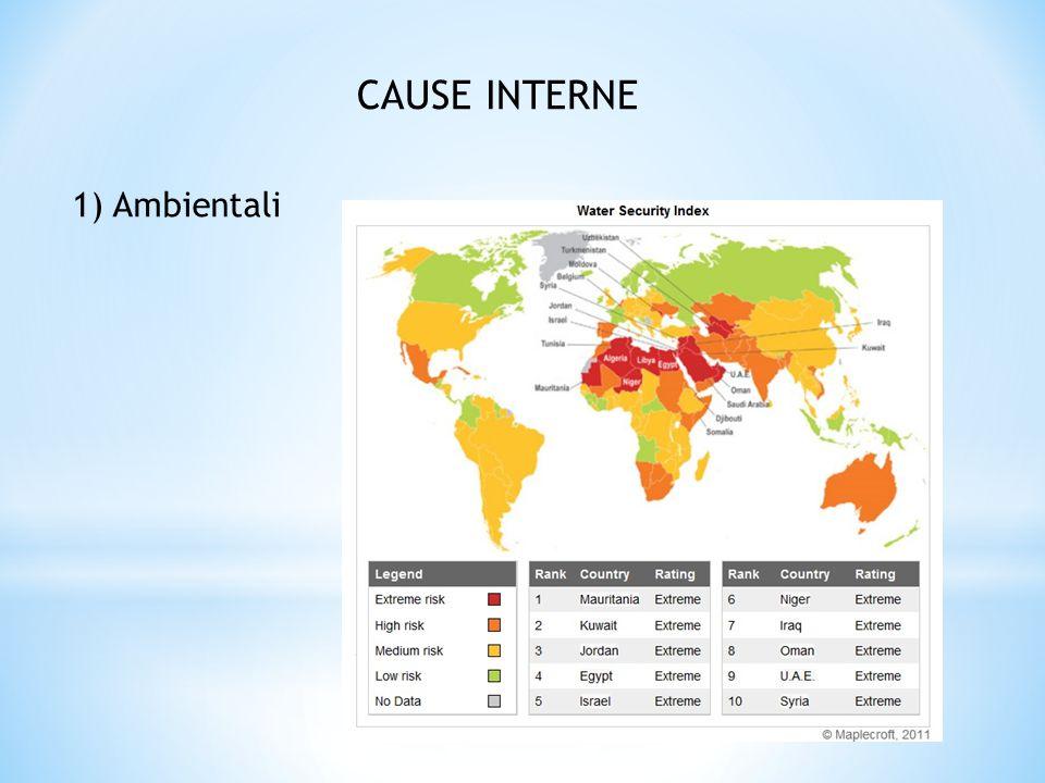 CAUSE INTERNE 1) Ambientali