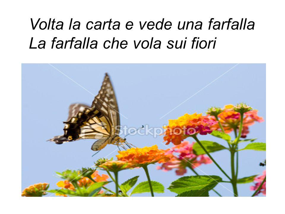 Volta la carta e vede una farfalla La farfalla che vola sui fiori