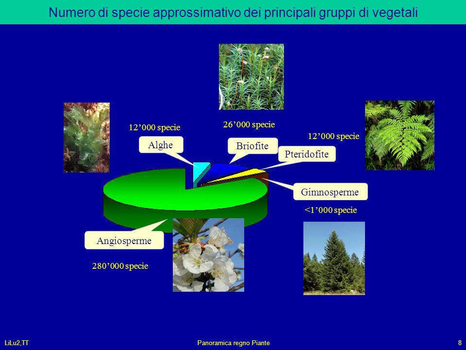 LiLu2,TTPanoramica regno Piante8 Numero di specie approssimativo dei principali gruppi di vegetali Gimnosperme Pteridofite Briofite Alghe Angiosperme