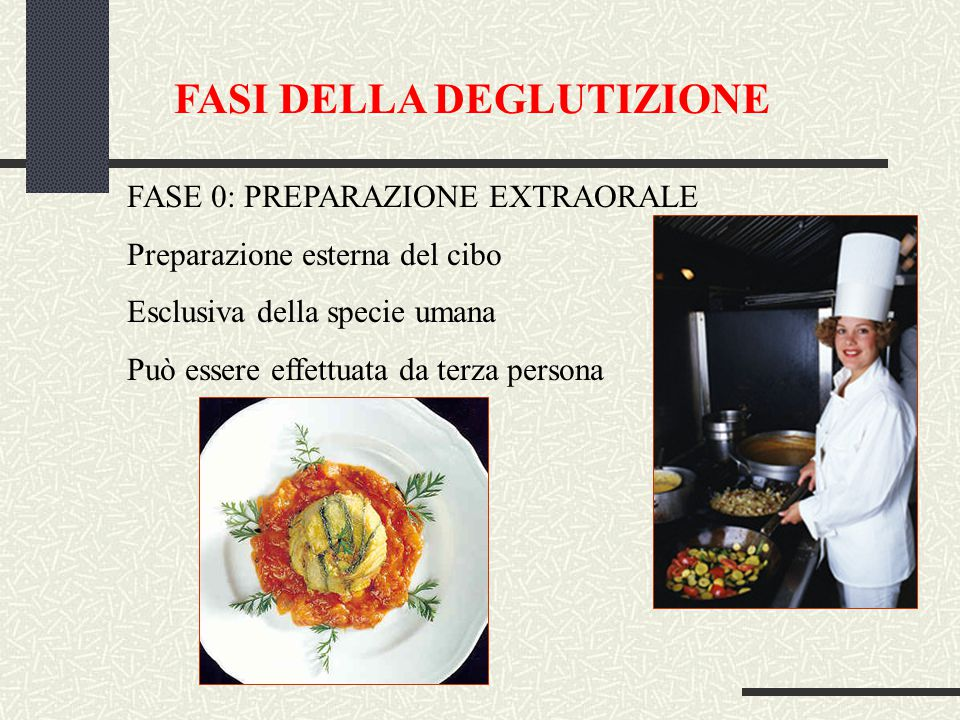 FASI DELLA DEGLUTIZIONE FASE 0: PREPARAZIONE EXTRAORALE Preparazione esterna del cibo Esclusiva della specie umana Può essere effettuata da terza persona