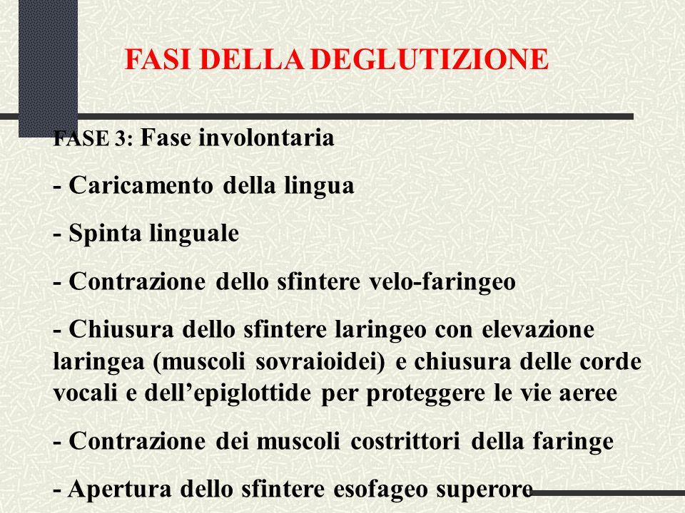 FASI DELLA DEGLUTIZIONE FASE 3: Fase involontaria - Caricamento della lingua - Spinta linguale - Contrazione dello sfintere velo-faringeo - Chiusura dello sfintere laringeo con elevazione laringea (muscoli sovraioidei) e chiusura delle corde vocali e dell'epiglottide per proteggere le vie aeree - Contrazione dei muscoli costrittori della faringe - Apertura dello sfintere esofageo superore