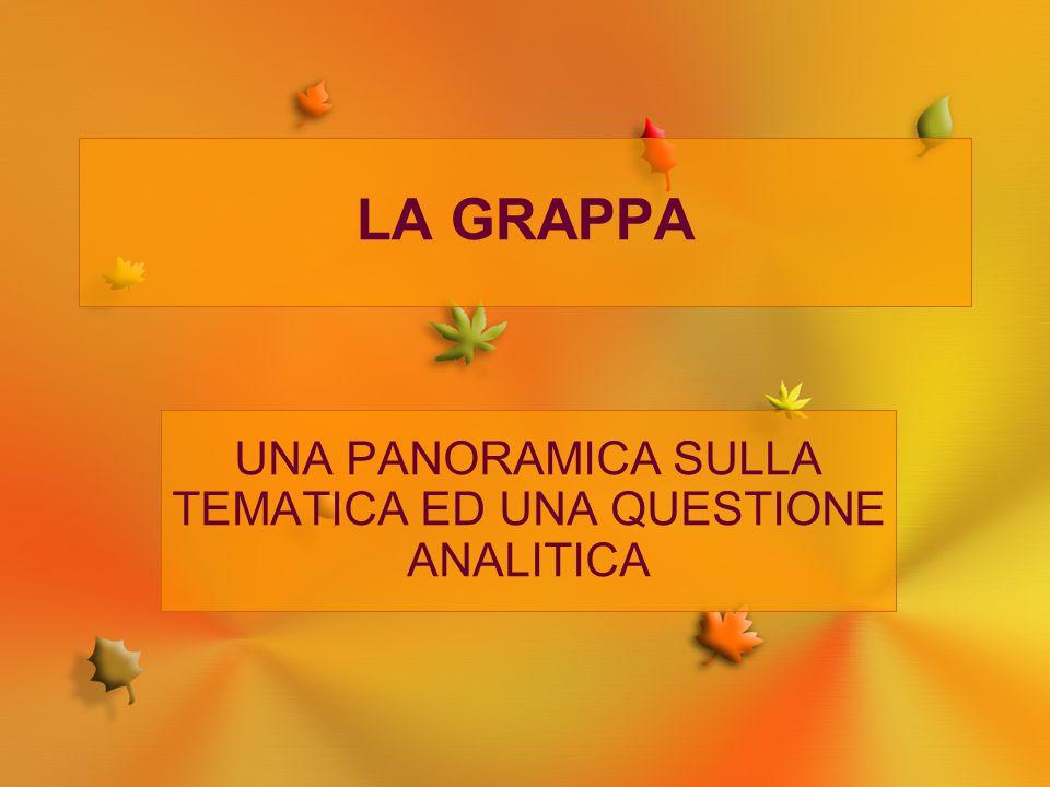 LA GRAPPA UNA PANORAMICA SULLA TEMATICA ED UNA QUESTIONE ANALITICA