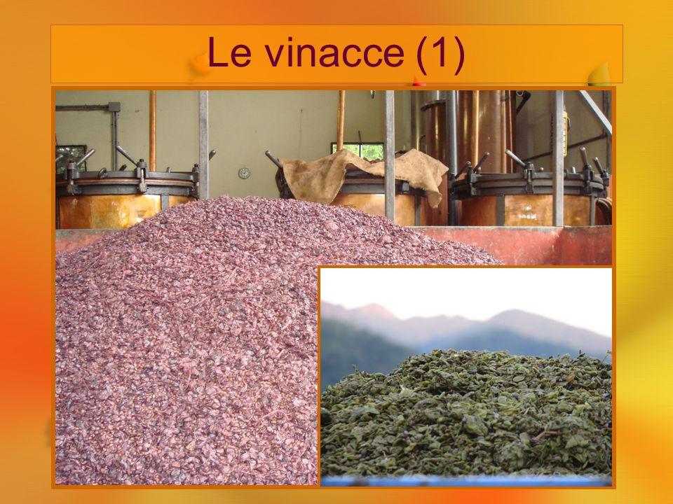 Le vinacce (1) Sono il complesso delle parti solide dell'uva e vengono distinte in vergini, fermentate e semifermentate. Vergini: non hanno subito pra