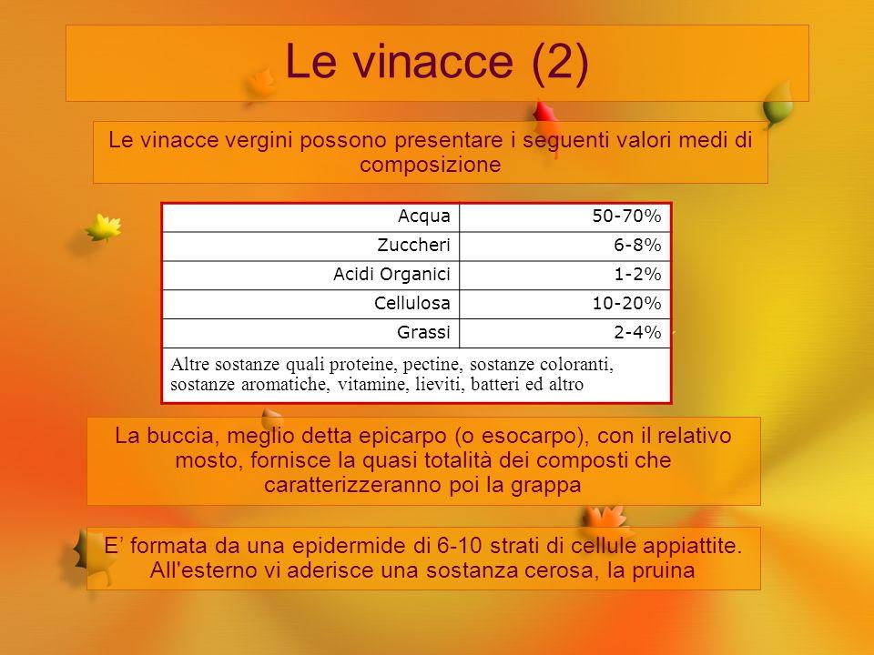 Le vinacce (2) Le vinacce vergini possono presentare i seguenti valori medi di composizione La buccia, meglio detta epicarpo (o esocarpo), con il rela