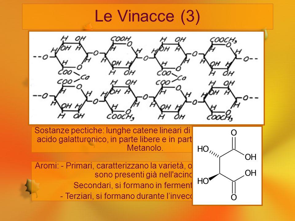 Le Vinacce (3) Acqua: si può arrivare al 10% Zuccheri: essenzialmente glucosio e fruttosio. Sostanze pectiche: lunghe catene lineari di condensazione