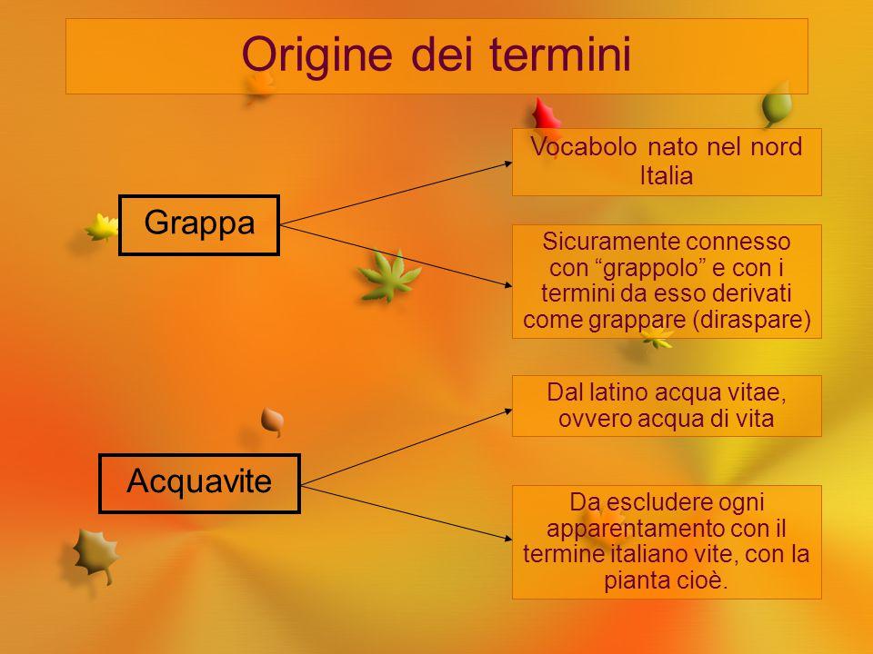 """Origine dei termini Grappa Vocabolo nato nel nord Italia Sicuramente connesso con """"grappolo"""" e con i termini da esso derivati come grappare (diraspare"""