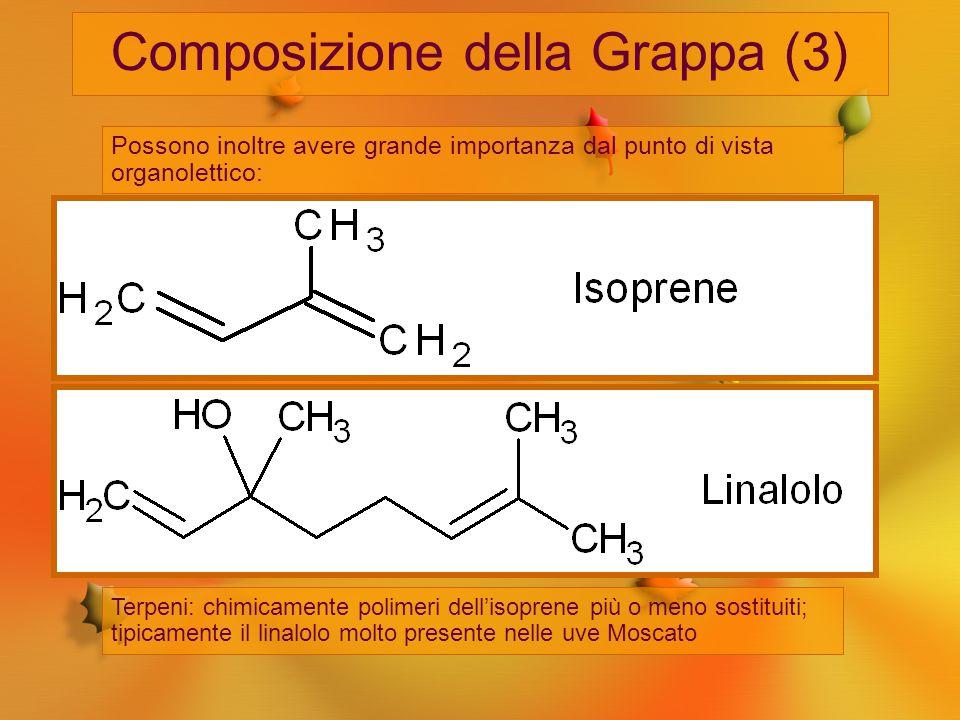 Composizione della Grappa (3) Possono inoltre avere grande importanza dal punto di vista organolettico: Esteri, come gli acetati di esile, di beta-fen