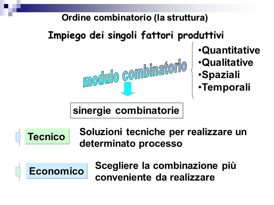 Ordine combinatorio (la struttura) Impiego dei singoli fattori produttivi sinergie combinatorie Tecnico Economico Soluzioni tecniche per realizzare un determinato processo Scegliere la combinazione più conveniente da realizzare Quantitative Qualitative Spaziali Temporali