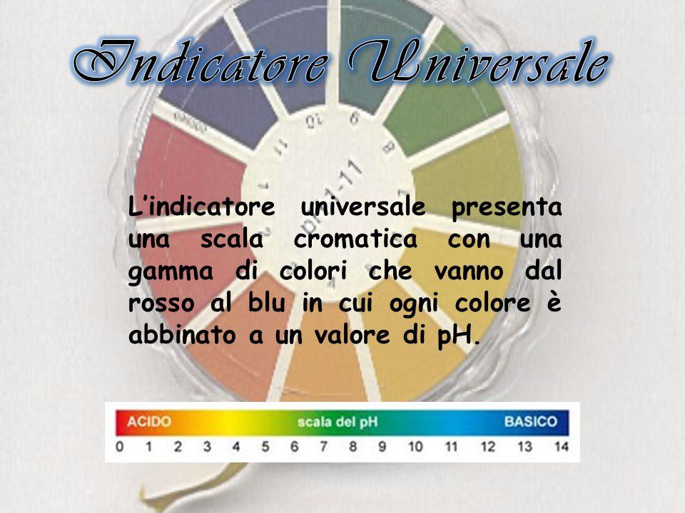 L'indicatore universale presenta una scala cromatica con una gamma di colori che vanno dal rosso al blu in cui ogni colore è abbinato a un valore di pH.