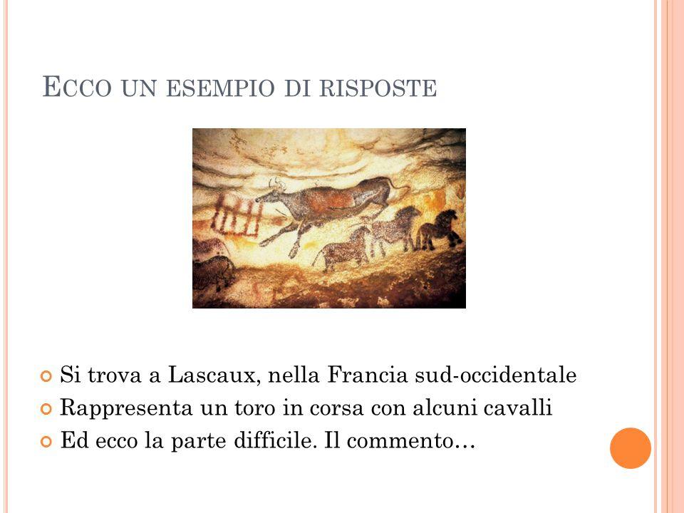 E CCO UN ESEMPIO DI RISPOSTE Si trova a Lascaux, nella Francia sud-occidentale Rappresenta un toro in corsa con alcuni cavalli Ed ecco la parte diffic