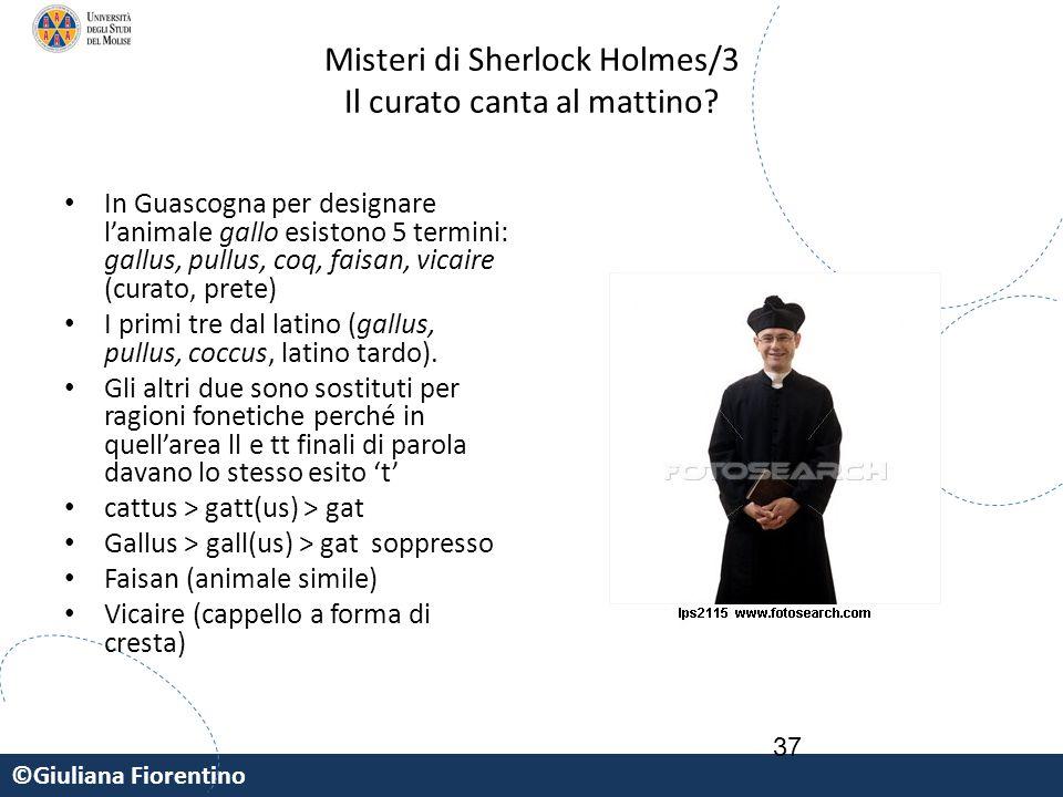 ©Giuliana Fiorentino 37 Misteri di Sherlock Holmes/3 Il curato canta al mattino? In Guascogna per designare l'animale gallo esistono 5 termini: gallus