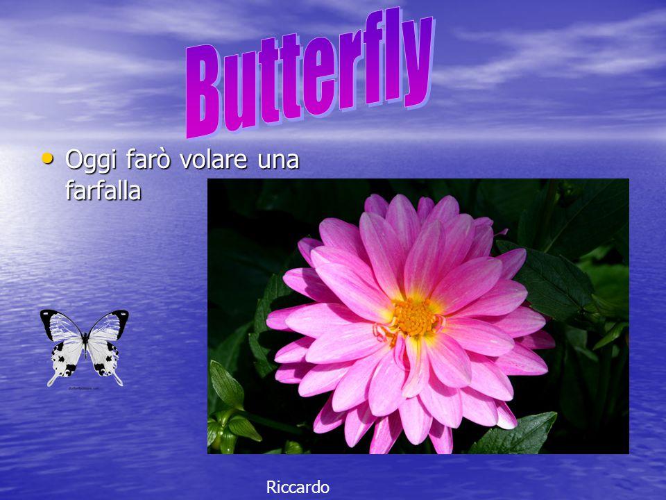 Oggi farò volare una farfalla Oggi farò volare una farfalla Riccardo