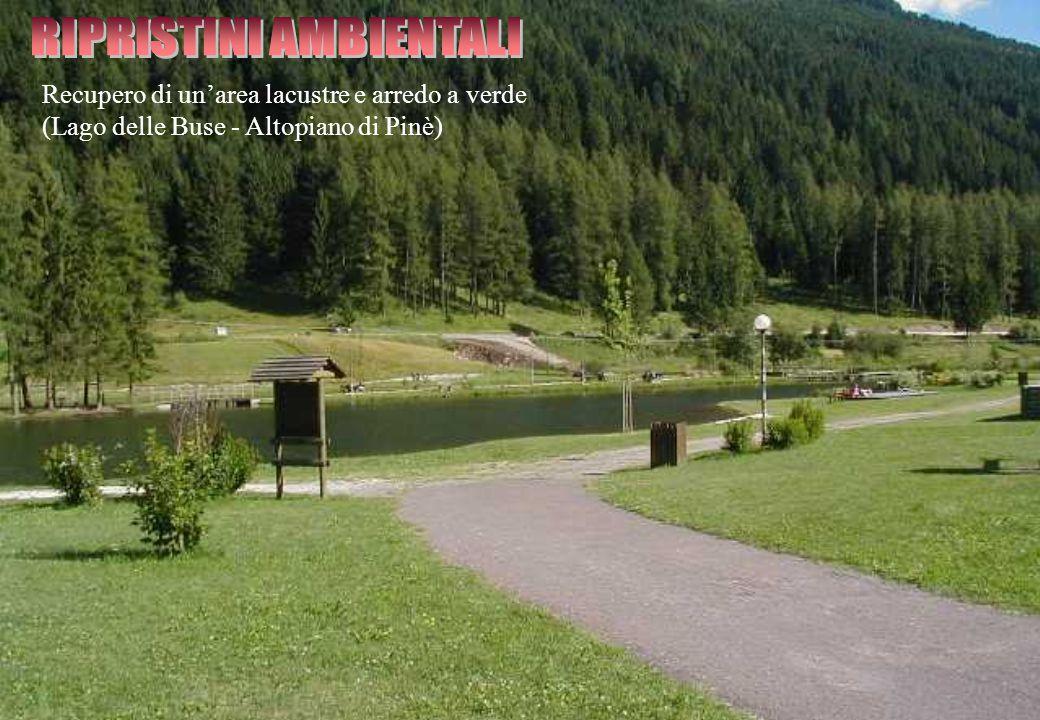 Recupero di un'area lacustre e arredo a verde (Lago delle Buse - Altopiano di Pinè)