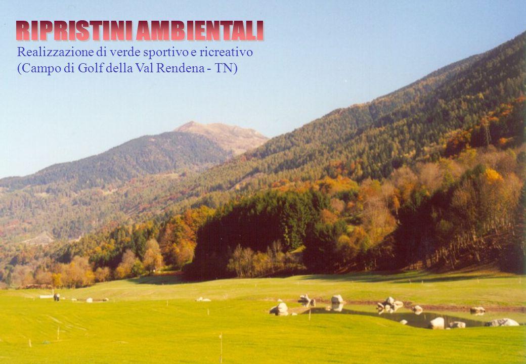 Realizzazione di verde sportivo e ricreativo (Campo di Golf della Val Rendena - TN)