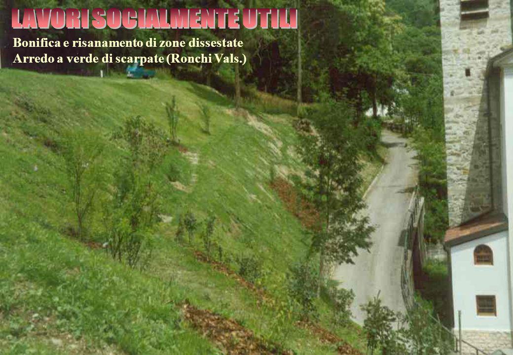 Bonifica e risanamento di zone dissestate Arredo a verde di scarpate (Ronchi Vals.)