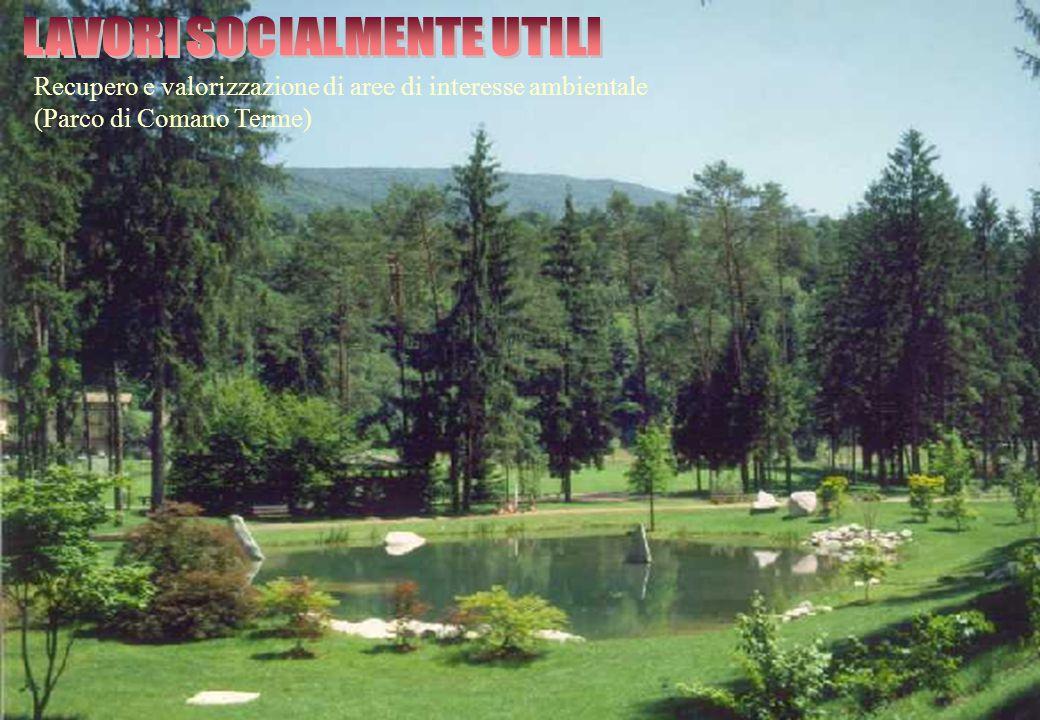 Recupero e valorizzazione di aree di interesse ambientale (Parco di Comano Terme)