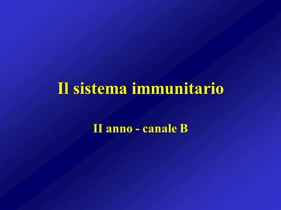 Il sistema immunitario II anno - canale B