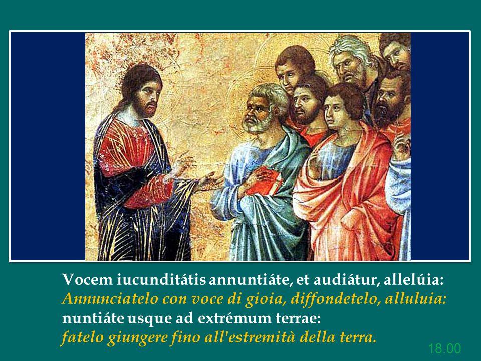 Papa Francesco Omelia della Messa nella Festa di S.