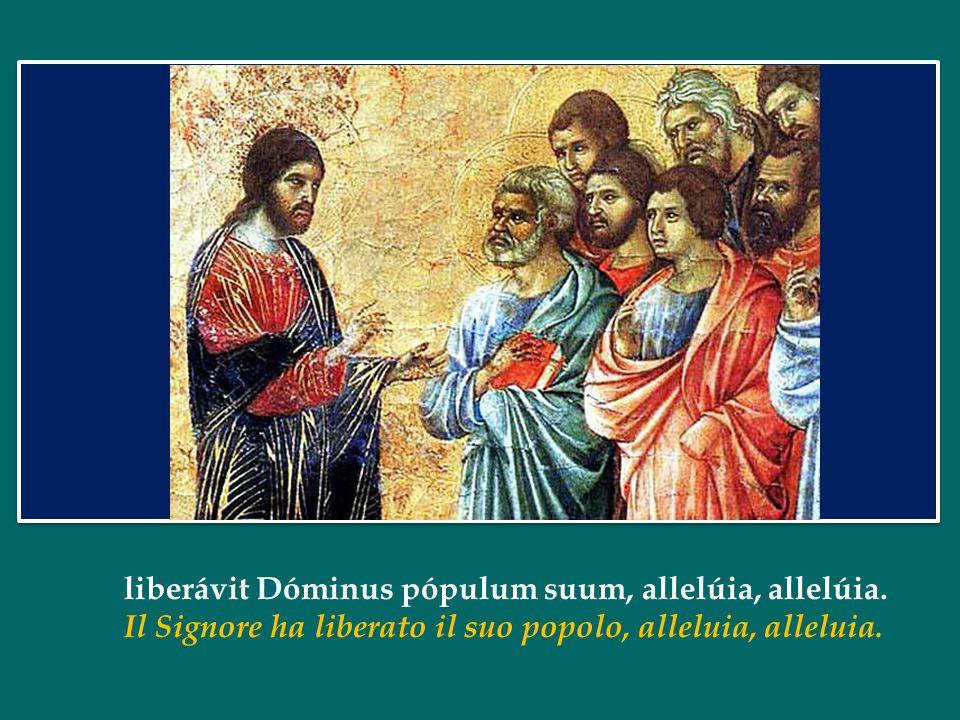 Vocem iucunditátis annuntiáte, et audiátur, allelúia: Annunciatelo con voce di gioia, diffondetelo, alluluia: nuntiáte usque ad extrémum terrae: fatel