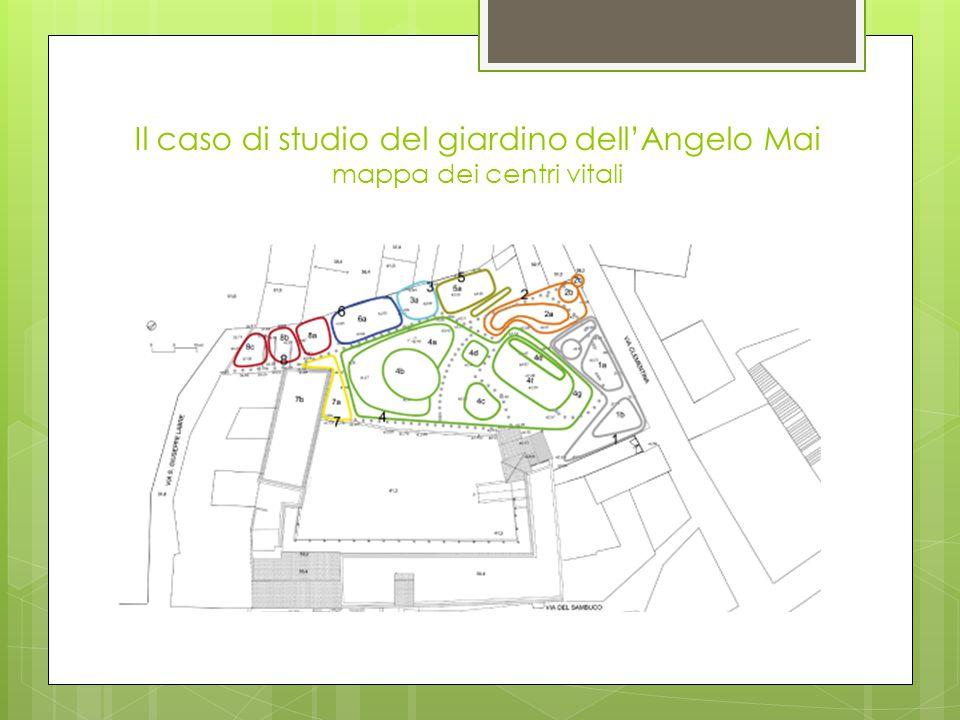 Il caso di studio del giardino dell'Angelo Mai processo di unfolding  Questa fase del processo consiste nel trasformare in centri vitali tutti i centri in nuce ricavati dal visioning.