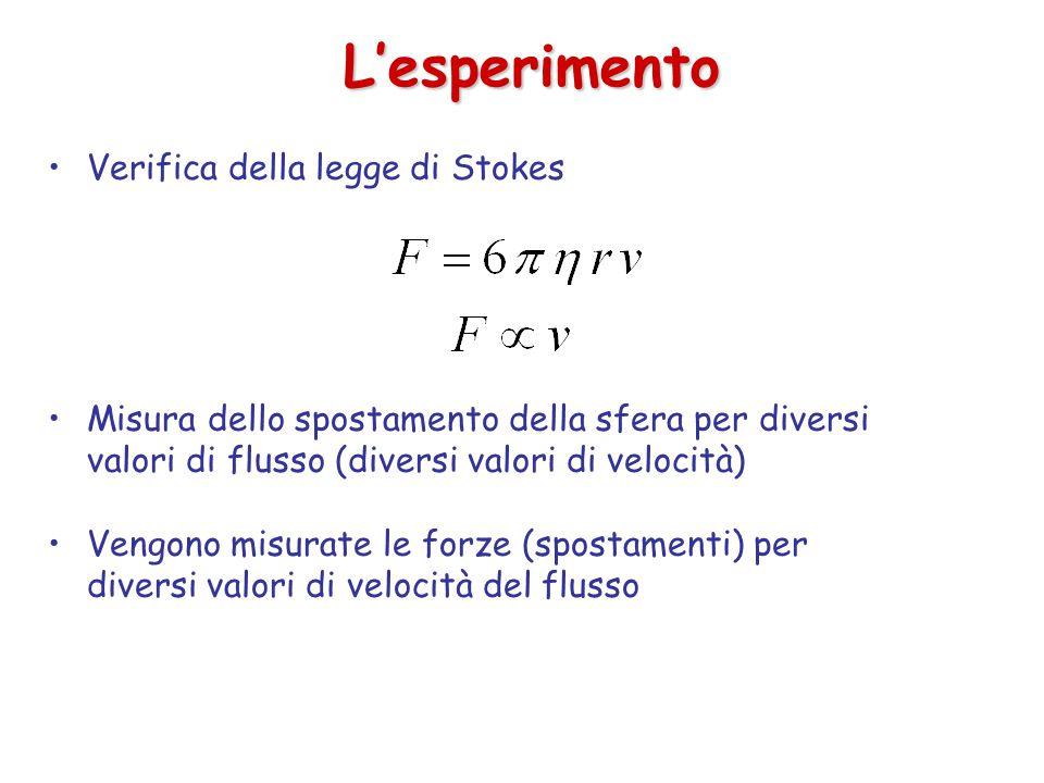 L'esperimento Verifica della legge di Stokes Misura dello spostamento della sfera per diversi valori di flusso (diversi valori di velocità) Vengono misurate le forze (spostamenti) per diversi valori di velocità del flusso