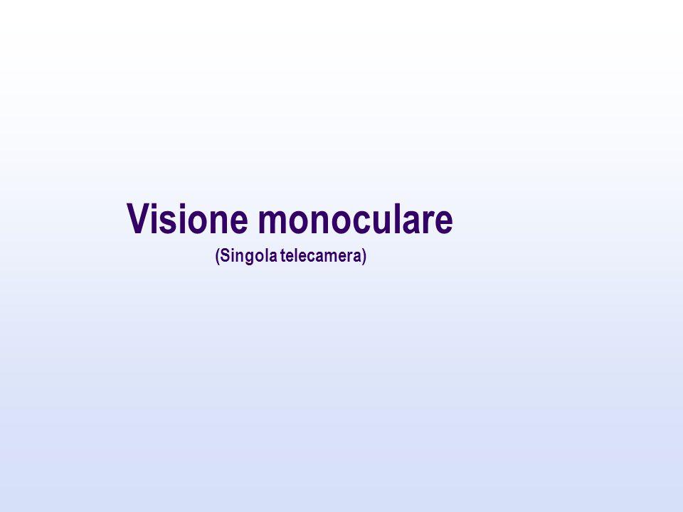 Visione monoculare (Singola telecamera)