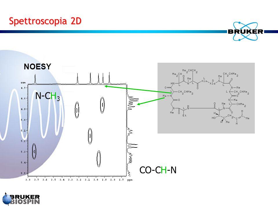Spettroscopia 2D NOESY N-CH 3 CO-CH-N