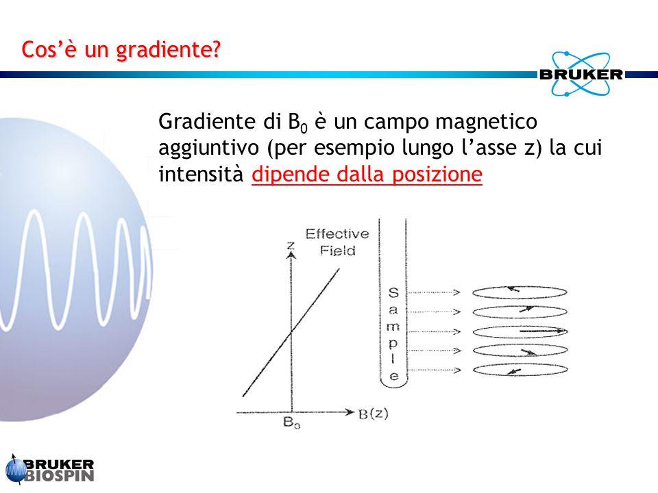 Gradiente di B 0 è un campo magnetico aggiuntivo (per esempio lungo l'asse z) la cui intensità dipende dalla posizione Cos'è un gradiente?
