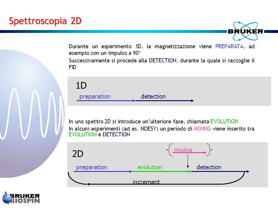 Durante un esperimento 1D, la magnetizzazione viene PREPARATA, ad esempio con un impulso a 90º Successivamente si procede alla DETECTION, durante la q