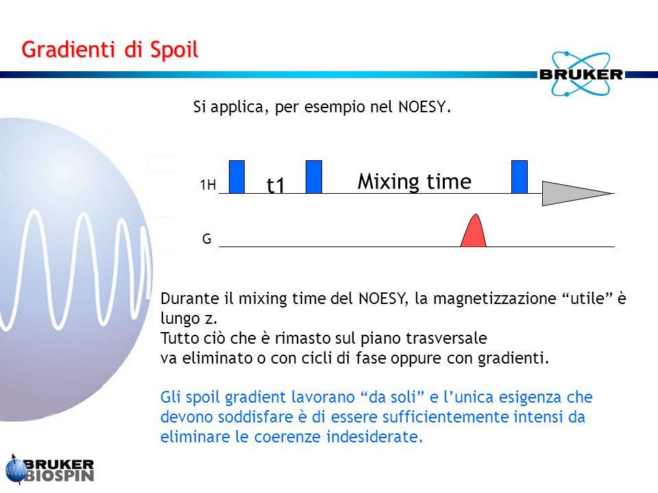 """Si applica, per esempio nel NOESY. 1H G t1 Mixing time Durante il mixing time del NOESY, la magnetizzazione """"utile"""" è lungo z. Tutto ciò che è rimasto"""