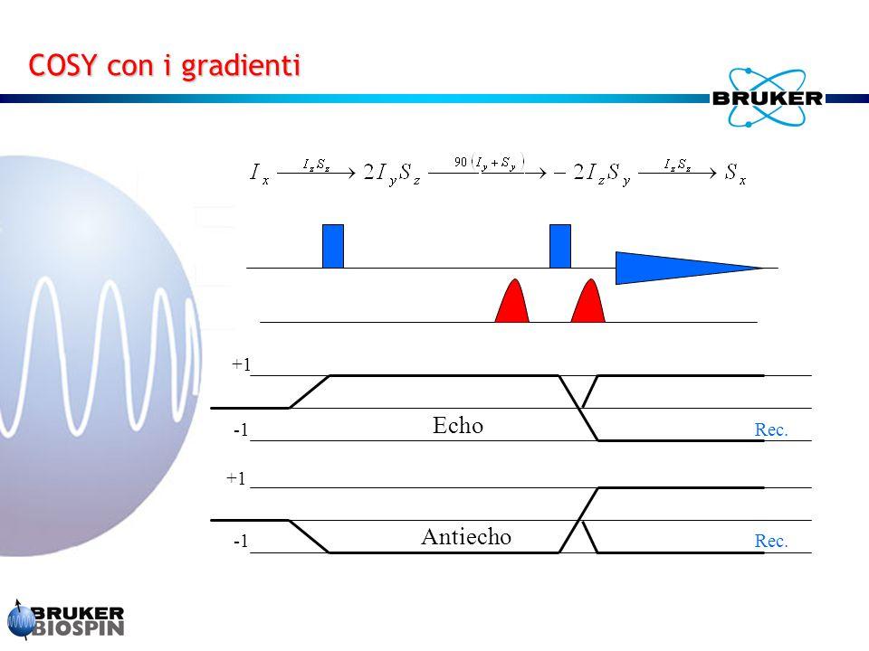 +1 Rec. +1 Rec. Echo Antiecho COSY con i gradienti