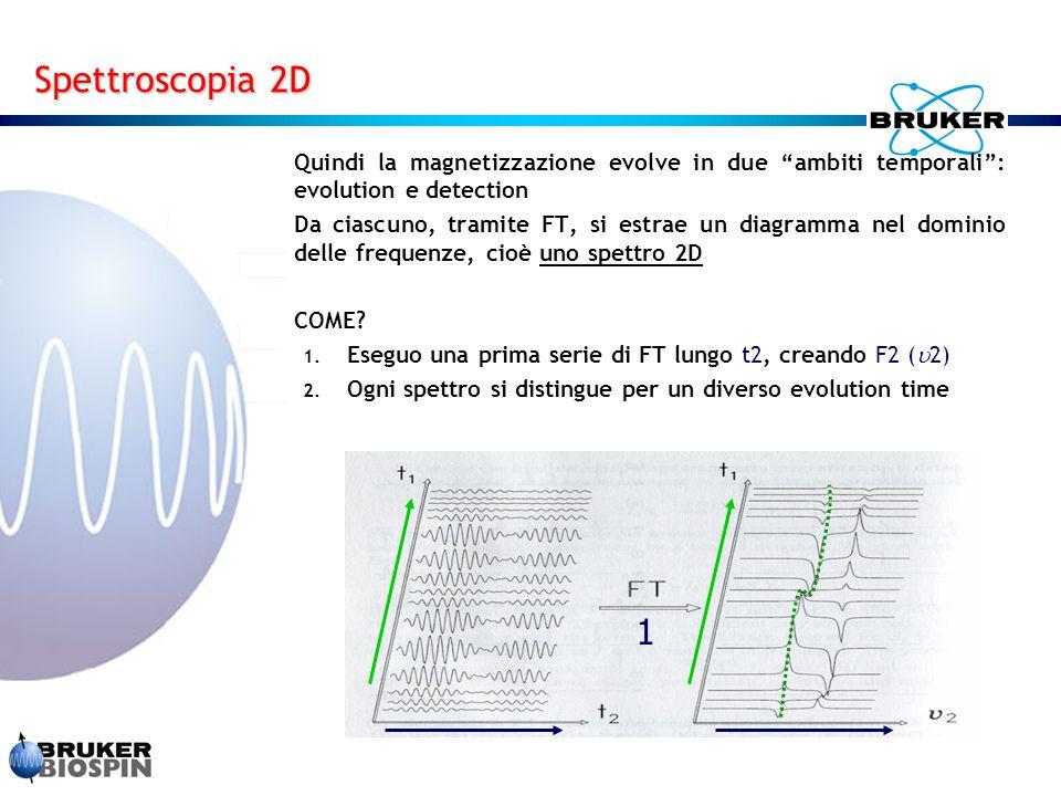 Quindi la magnetizzazione evolve in due ambiti temporali : evolution e detection Da ciascuno, tramite FT, si estrae un diagramma nel dominio delle frequenze, cioè uno spettro 2D COME.