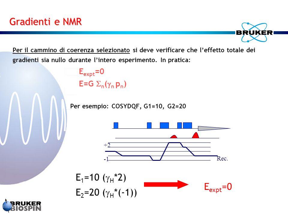 Per il cammino di coerenza selezionato si deve verificare che l'effetto totale dei gradienti sia nullo durante l'intero esperimento. In pratica: E exp