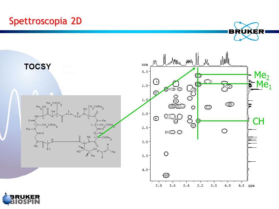 Spettroscopia 2D TOCSY CH Me 2 Me 1