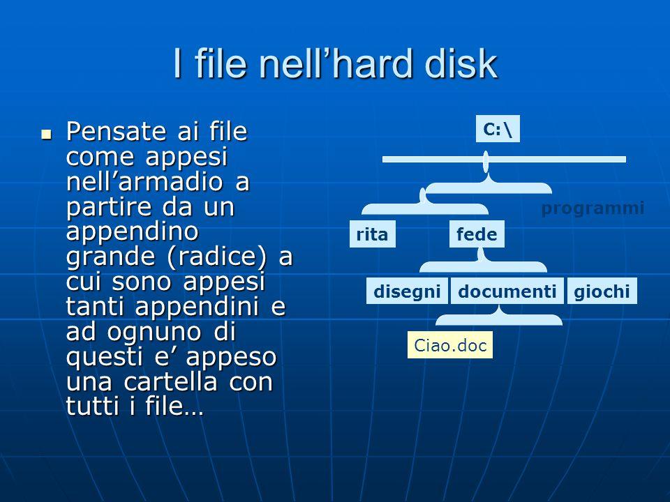 I file nell'hard disk Pensate ai file come appesi nell'armadio a partire da un appendino grande (radice) a cui sono appesi tanti appendini e ad ognuno