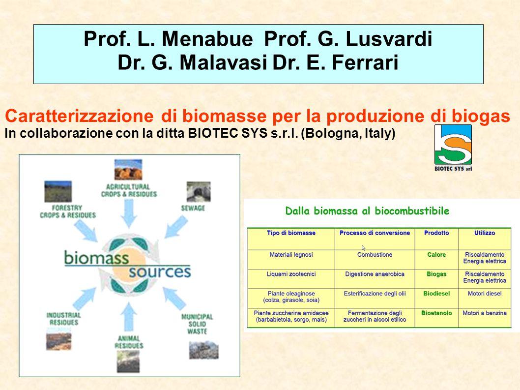 Caratterizzazione di biomasse per la produzione di biogas In collaborazione con la ditta BIOTEC SYS s.r.l. (Bologna, Italy) Prof. L. Menabue Prof. G.