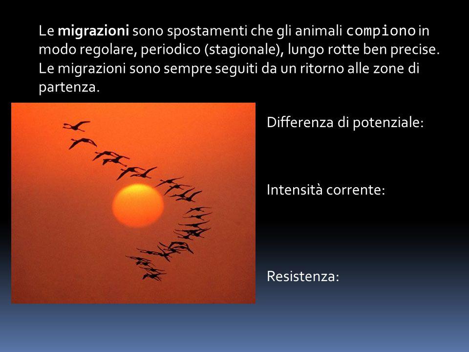 Le migrazioni sono spostamenti che gli animali compiono in modo regolare, periodico (stagionale), lungo rotte ben precise.