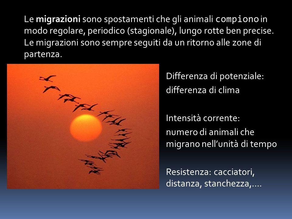 Le migrazioni sono spostamenti che gli animali compiono in modo regolare, periodico (stagionale), lungo rotte ben precise. Le migrazioni sono sempre s