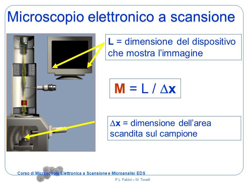  x = dimensione dell'area scandita sul campione L = dimensione del dispositivo che mostra l'immagine M = L /  x Microscopio elettronico a scansione