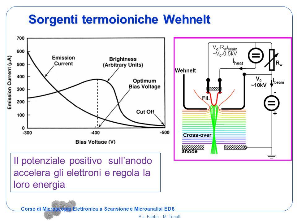 Sorgenti termoioniche Wehnelt Il potenziale positivo sull'anodo accelera gli elettroni e regola la loro energia Corso di Microscopia Elettronica a Sca