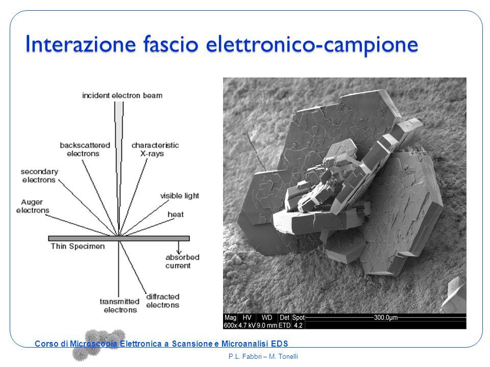 Interazione fascio elettronico-campione Corso di Microscopia Elettronica a Scansione e Microanalisi EDS P.L. Fabbri – M. Tonelli