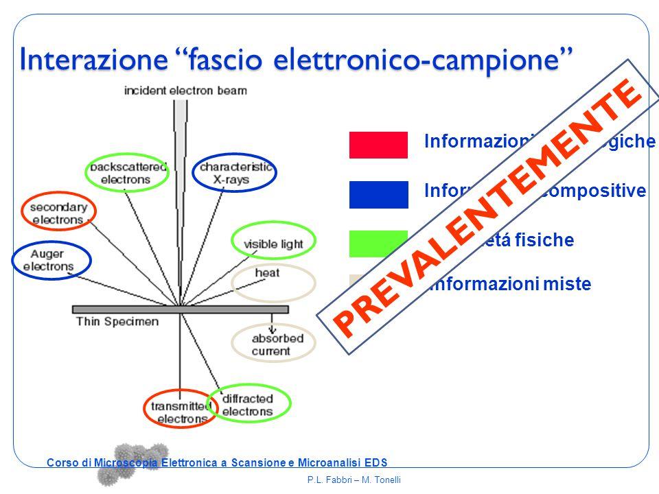 """Interazione """"fascio elettronico-campione"""" Informazioni morfologiche Informazioni compositive Informazioni miste Proprietá fisiche PREVALENTEMENTE Cors"""
