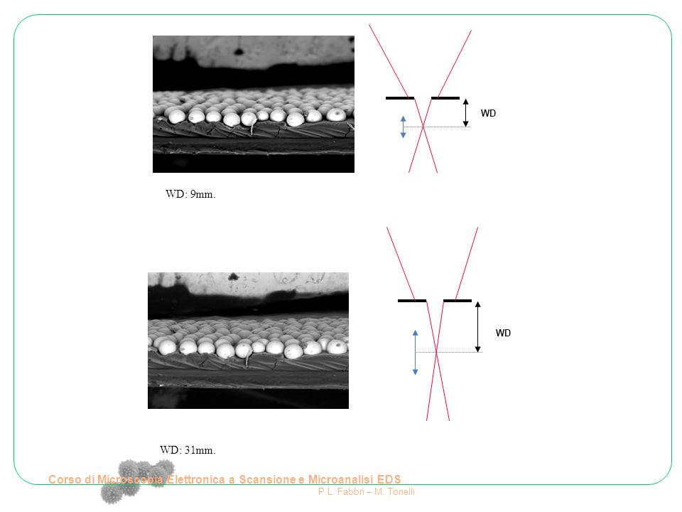 WD: 9mm. WD: 31mm. WD Corso di Microscopia Elettronica a Scansione e Microanalisi EDS P.L. Fabbri – M. Tonelli