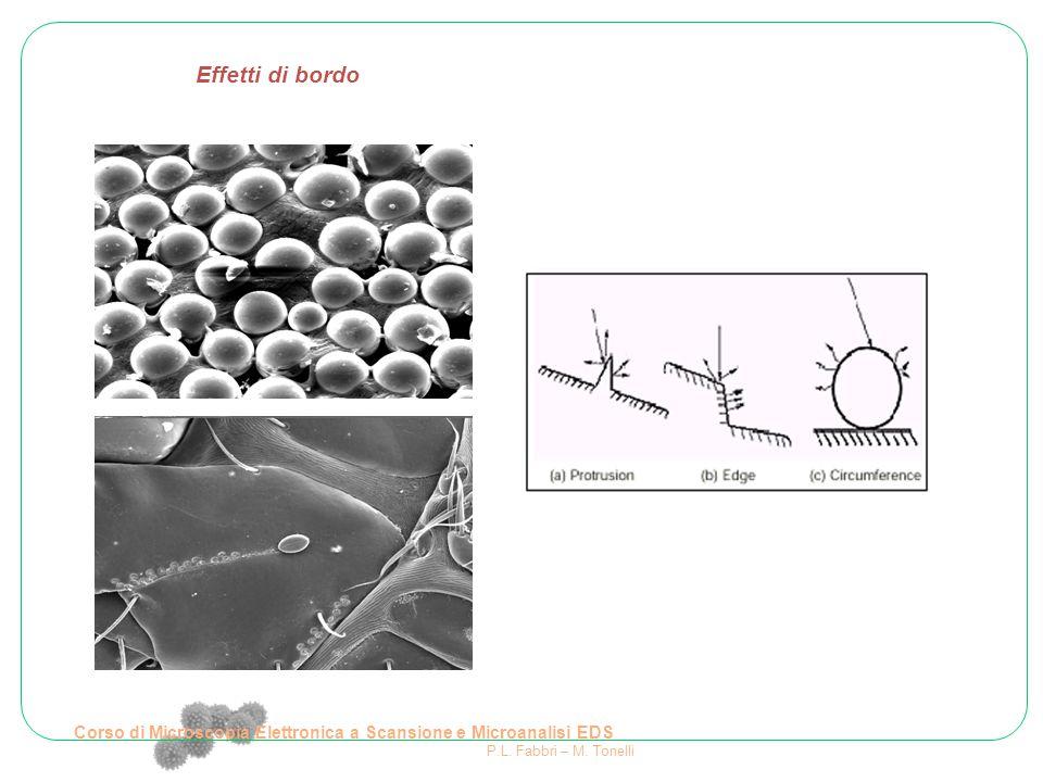 Effetti di bordo Corso di Microscopia Elettronica a Scansione e Microanalisi EDS P.L. Fabbri – M. Tonelli