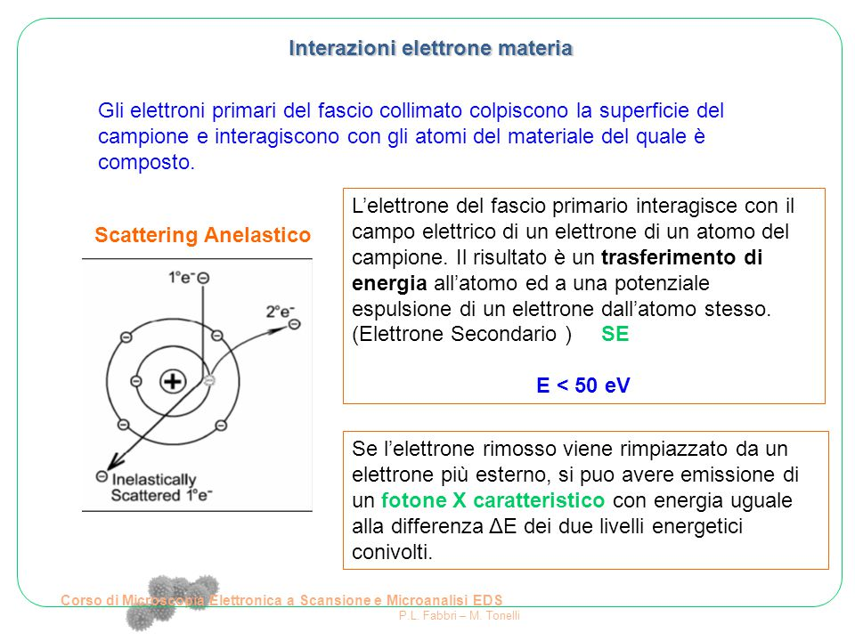Corso di Microscopia Elettronica a Scansione e Microanalisi EDS P.L. Fabbri – M. Tonelli Interazioni elettrone materia Gli elettroni primari del fasci