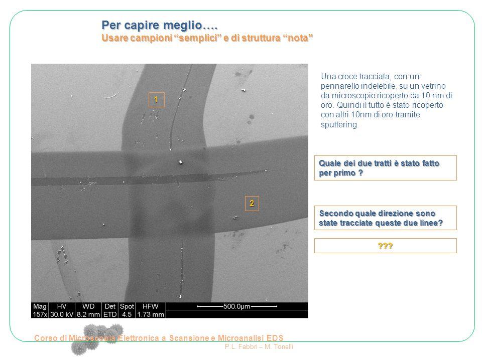 """Corso di Microscopia Elettronica a Scansione e Microanalisi EDS P.L. Fabbri – M. Tonelli Per capire meglio…. Usare campioni """"semplici"""" e di struttura"""