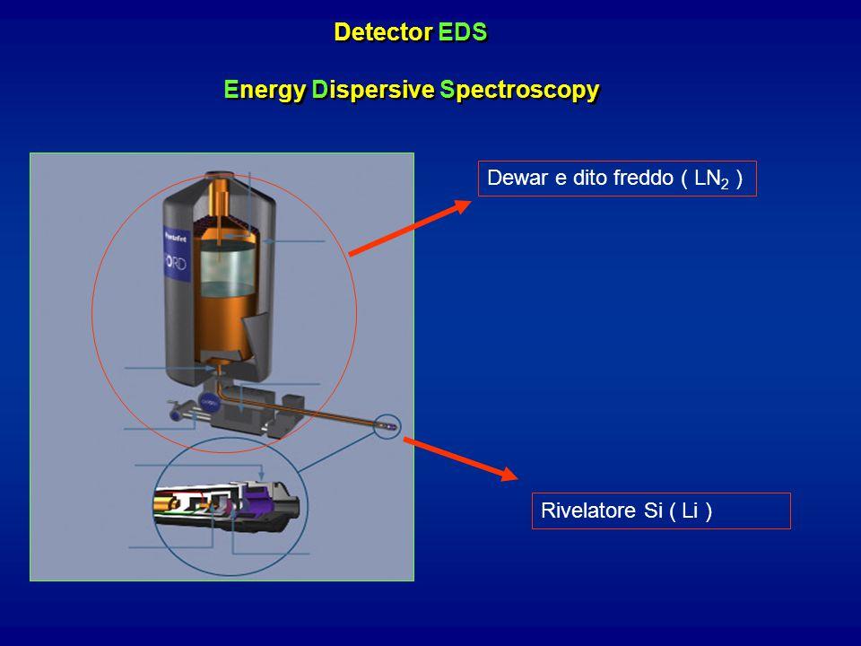 Detector EDS Energy Dispersive Spectroscopy Dewar e dito freddo ( LN 2 ) Rivelatore Si ( Li )