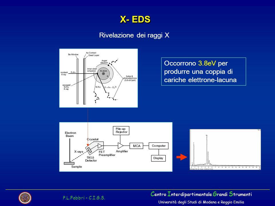X- EDS P.L.Fabbri - C.I.G.S. C entro I nterdipartimentale G randi S trumenti Università degli Studi di Modena e Reggio Emilia Rivelazione dei raggi X