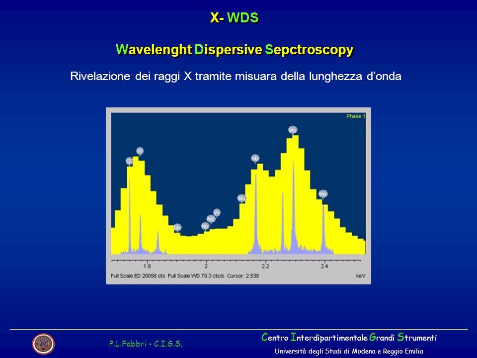 X- WDS Wavelenght Dispersive Sepctroscopy P.L.Fabbri - C.I.G.S. C entro I nterdipartimentale G randi S trumenti Università degli Studi di Modena e Reg