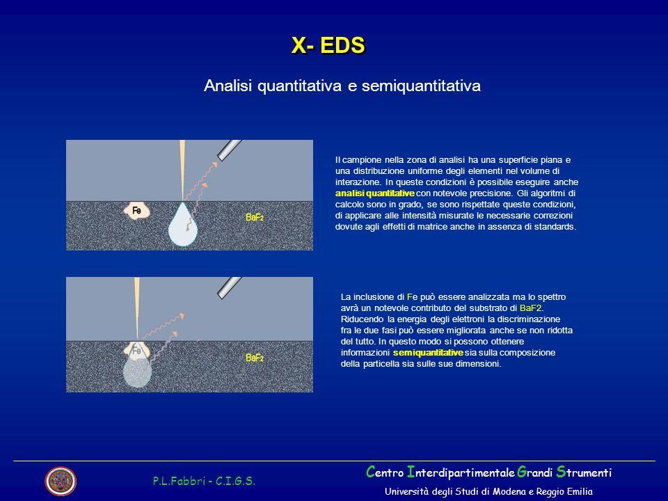 X- EDS P.L.Fabbri - C.I.G.S.